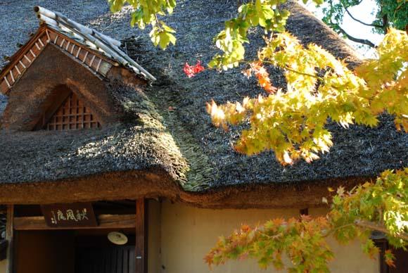 2010.10.17-2.JPG